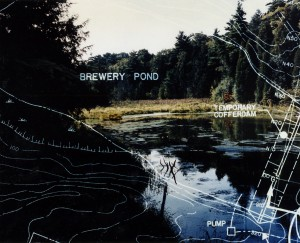 Brewery Pond1