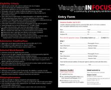 Vaughan In Focus : call for submissions