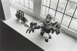 gagnon_michikos-gardenia_montreal_1974_1974
