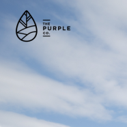 Digital Content Producer at The Purple Co.   6 month Contract   Apply by Sep 22